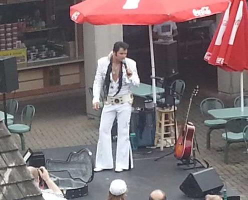 Elvis-Niagara-Falls